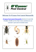 O'Connor Pest Control Service in Watsonville, CA