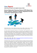 Chronic Obstructive Pulmonary Disease Market Analysis, Segmented Overview and Outlook