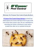 O'Connor Pest & Termite Control Service in Santa Barbara, CA