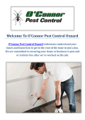 O'Connor Pest & Termite Control Service in Oxnard, CA