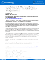 Li-ion Battery for E-Bikes Market Insights, Industry and Study of Market Challenges and Development Trends