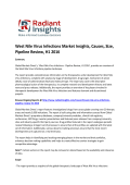 West Nile Virus Infections Market Insights, Causes, Size, Pipeline Review, H1 2016: Radiant Insights