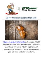 O'Connor Pest & Termite Control Camarillo