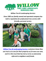 Willow Tree & Landscaping Services In Philadelphia