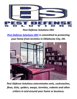 Pest Defense Solutions : Pest Control Oklahoma City, OK