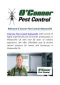 O'Connor Pest & termite Control Watsonville