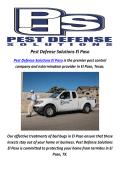 Pest Defense Solutions In El Paso, TX