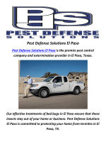 Pest Defense Solutions In El Paso, TX