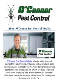 O'Connor Termite Control Visalia, CA