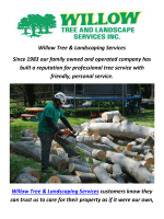 Willow Tree & Landscaping Services In Montgomery County