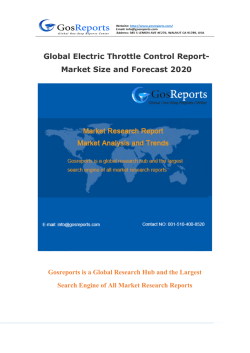 Global Electric Throttle Control Report-Market Size and Forecast 2020
