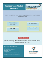 Waste to Energy Market Share 2013 - 2019