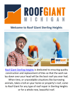 Roof Giant : Roof repair in sterling heights, MI