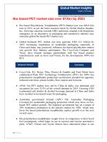 pdf Bio based Polyethylene Terephthalate (PET) Market