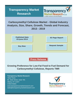 Carboxymethyl Cellulose Market will be worth of US$1,039.8 Mn in 2019, growing at a CAGR of 3.2% by 2019