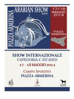 regolamento Piazza Armerina2014