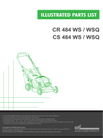 CR 484 WS / WSQ CS 484 WS / WSQ