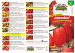 Pomodori - Orto Mio