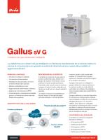Gallus sV G