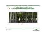Progetto Paulownia CLONE IN VITRO 112