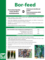 Formulato liquido a base di Boro etanolammina - Haifa