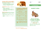 Brochure Anagrafe Canina