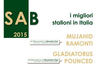 Brochure stalloni 2015 - SAB Società Allevamento Besnate