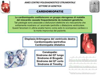 cardiologia - Centro Polidiagnostico Ames