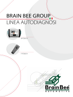 BRAIN BEE GROUP LINEA AUTODIAGNOSI - AM