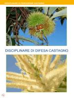 DISCIPLINARE DI DIFESA CASTAGNO