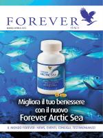 Forever Arctic Sea