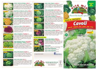 Cavoli - Orto Mio