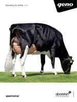 Catalogo agosto 2014 – Holstein