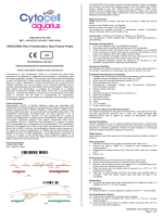 IGH/CCND3 Plus Translocation, Dual Fusion Probe