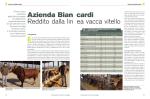 Reddito dalla lin ea vacca vitello Azienda Bian cardi