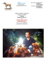 Zootec. di Marmentino e Irma 2013