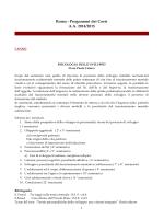 Roma - Programmi dei Corsi A.A. 2014/2015