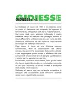 GIDIESSE s.r.l.
