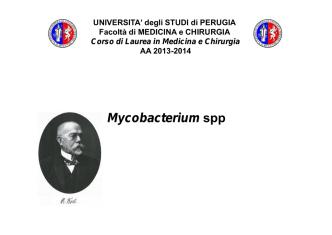 17.mycobacterium - Università degli Studi di Perugia
