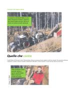 articolo italiano impaginato