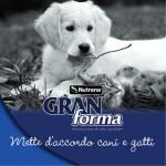 Scarica la brochure Nutrena GranForma