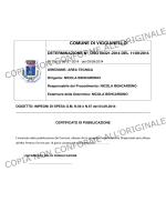 PAP 00538-2014 - Comune di Viggianello