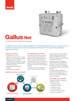 Gallus Net