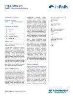 TFE3 (MRQ-37) - Menarini Diagnostics