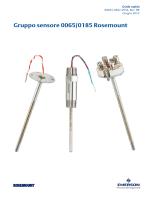 Gruppo sensore 0065/0185 Rosemount