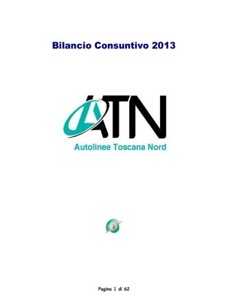 Bilancio Atn Srl 2013