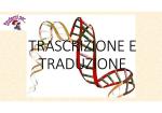 genetica 3 trascrizione e traduzione
