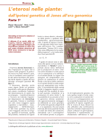 Eterosi_dalSeme #1 - Gianni Barcaccia Laboratory