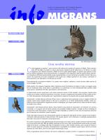 n. 34 (Dicembre 2014) - Parco Naturale Alpi Marittime