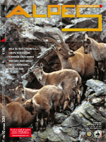 n. 10 2014 - Alpesagia